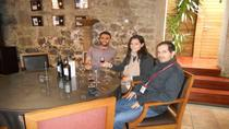 Porto Wine and Gastronomy Walking Tour , Porto, Walking Tours