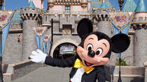 Private Charter to Disneyland with Japanese Speaker, Los Angeles, Private Sightseeing Tours