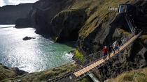 Belfast Shore Excursion: The Best of Northern Ireland Including Giant's Causeway, Belfast, Ports of ...
