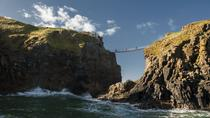 Express tour - Giant's Causeway and Carrick-a-Rede Rope Bridge from Dublin, Dublin, Walking Tours