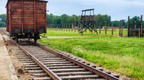 Auschwitz-Birkenau Museum Half-Day Bus Tour from Krakow, Krakow, Private Sightseeing Tours