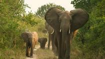 3 Days 2 Nights Queen Elizabeth National Park, Kampala, Attraction Tickets