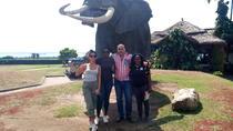 5 DAYS 4 NIGHTS QUEEN ELIZABETH NATIONAL PARK & CHIMPANZEE TRACKING IN KALINZU, Kampala, Attraction...
