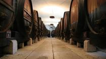 Setúbal and Arrábida Tour from Lisbon with Wine Tasting, Lisbon, City Tours