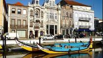 Aveiro Half-Day Tour from Porto Including Moliceiro River Cruise, Porto