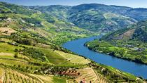 Douro Valley Wine Tour with Lunch, Tastings and River Cruise, Porto, Day Trips