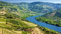 Full-Day Wine Tasting Tour in the Douro Valley with Lunch, Porto