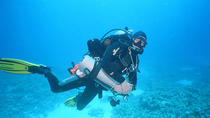 8-Day 7-Night Red Sea Trip, Sharm el Sheikh, Multi-day Tours
