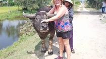 AFTERNOON HOI AN COUNTRYSIDE TOUR depature from HOTELS in HOI AN or DA NANG city, Da Nang, 4WD, ATV ...