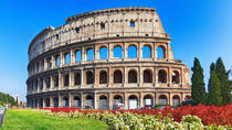Private Tour: Colosseum Imperial Forum and Palatine Hill, Rome, Walking Tours