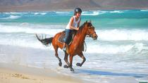 Horse Riding Centre, Sal, 4WD, ATV & Off-Road Tours