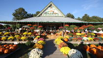 Hunt Club Farm Fall Harvest Festival, Virginia Beach, Attraction Tickets