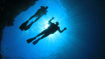 Scuba dive from shore on North Shore, Oahu for certified divers - Gear included, Oahu, Scuba Diving