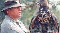 Endangered Wildlife Full Day Tour from Hazyview, Kruger National Park, Full-day Tours