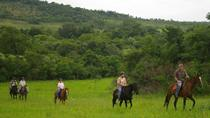 Horse Trails - 1 hour Bush Trail in Hazyview, Kruger National Park, 4WD, ATV & Off-Road Tours