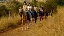 Horse Trails - Picnic & Sundowner Rides in Hazyview, Kruger National Park, 4WD, ATV & Off-Road Tours