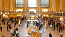 Grand Central: The Open Sesame Bagel Tour, New York City, Photography Tours