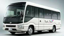 SEAT IN COACH-SHARED AIRPORT TRANSFER 2 WAY, Port Louis, Airport & Ground Transfers