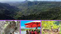 TEA AND CULTURE ROUTE-SHARED SCHEDULED TOUR, Mauritius, 4WD, ATV & Off-Road Tours