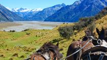Clippity Clops Scenic Day Tour & Clydesdale Horses High Country Wagon Ride, Christchurch, Cultural ...