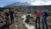 12 Days Kilimanjaro Climb via Machame Route, Luxury Safari & Charity Excursion, Arusha, 4WD, ATV &...