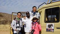 Safari vehicle & professional driver guide all inclusive daily hire, Nairobi, Airport & Ground...