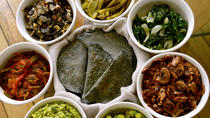 Private Market Tour and Authentic Mexican Cooking Class with a Local in Coyoacan, Mexico City,...