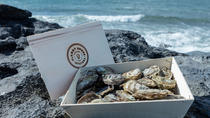 Private Oyster Tour and Tasting with Locals by Flaggy Shore, Galway, Food Tours