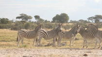 3 days Salt Pan Salt Pan Safari, Maun, 4WD, ATV & Off-Road Tours