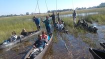 6 days North-West Safari, Botswana, Maun, 4WD, ATV & Off-Road Tours