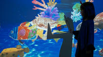 LeaLea Little Planet - Digital Virtual attractions at Waikiki Aquarium, Oahu, Attraction Tickets