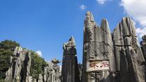 Mini Group Day Tour to Kunming Stone Forest and Bird Flower Market, Kunming, Bus & Minivan Tours
