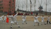 Private Day Tour to Shaolin Temple with Kung Fu Study-No Shopping Stops, Luoyang, Private Day Trips