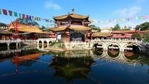 Private Kunming Day Tour to Stone Forest and Bird Flower Market, Kunming, Private Sightseeing Tours