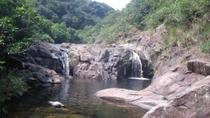 Hong Kong Nature Tour: Ponds and Waterfalls, Hong Kong, Nature & Wildlife