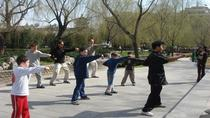Beijing Family Adventure Tour: Kungfu Class at Temple of Heaven and Great Wall and Flying Kite, ...