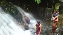 Balinese Ritual Bathing Experience at Waterfall Temple, Bali, Cultural Tours