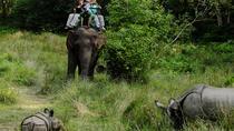 Chiwan Jungle Safari, Kathmandu, Multi-day Tours