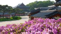 Small-Group Afternoon Seoul Tour, Seoul, Half-day Tours