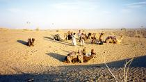 4-Night Golden Sands of Rajasthan Tour including Jaisalmer and the Sam Dunes, Jodhpur, Multi-day ...