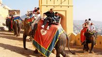 7-Day Heritage Tour of South and Central Rajasthan, India, Multi-day Tours