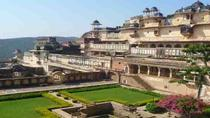 7-Day Royal Forts and Palaces Tour with Tiger Safari in Ranthambore from Jaipur, Jaipur, Multi-day ...