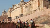 Jaipur Sightseeing Day Tour, Jaipur, Bike & Mountain Bike Tours