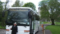 Full-day Ring of Kerry Tour from Killarney, Killarney, Hop-on Hop-off Tours