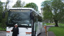 Ring of Kerry Day Tour, Killarney, Private Sightseeing Tours