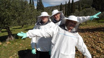 Become a Beekeeper for a Day in Nafplio, Peloponnese, Cultural Tours