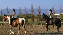 Horse Riding Experience in Nafplio, Peloponnese, Horseback Riding