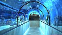 Planet Neptune Oceanarium Admission Ticket, St Petersburg, Attraction Tickets