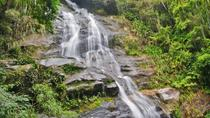 Tijuca National Park Customizable Private Tour in Rio de Janeiro, Rio de Janeiro, Half-day Tours