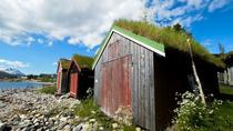 Small-group Arctic Landscapes Sightseeing - Summer Shore Excursion from Tromso, Tromso, Day Trips